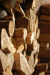 awaiting logs for the woodburner (mini louie) Tags: winter light against wall fire for store log crackling waiting warm im good timber grain logs warmth dry it cant mum be only wait loves law woohoo must heating stacked hardwood drying woodburner stovie becoming iknowimsad