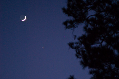 waxing crescent moon. waxing crescent moon,