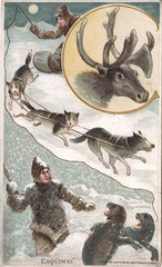 Arbuckle Bros. (Miami U. Libraries - Digital Collections) Tags: costumes snow dogs reindeer dogsledding indigenouspeoples clothingdress sleddogracing ethnicgroups indiansofnorthamerica victoriantradecards coffeeindustry miamiuniversitylibraries muohiodigitalcollections sealsanimals