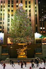 2008 Rockafeller Center Christmas Tree