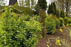 Blue Army Garden (Bruce Livingston) Tags: nj warrencounty newjerseyasbury bluearmyshrine nikon24mmpce