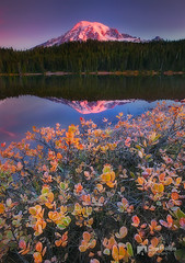 Fall Morning Reflection Lakes (Chip Phillips) Tags: park reflection fall washington state pacific northwest lakes foliage mount national rainier