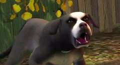 Sims 3 Pets 34