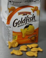 Projeto 365  174/365 (Mari Assmann) Tags: food 50mm dof goldfish snack cheddar baked biscoito pepperidgefarm project365 450d projeto365 canonxsi
