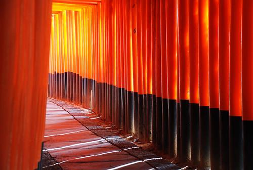 Rojo infinito  Fushimi Inari-Taisha  Templos (3)  Kyoto