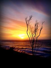 Sweeping Sky (lisaluvz) Tags: sunset sea sky cloud west tree nature silhouette wales waves colours wind cliffs flickrplatinum superbmasterpiece diamondclassphotographer flickrdiamond theperfectphotographer lisaluvz goldstaraward