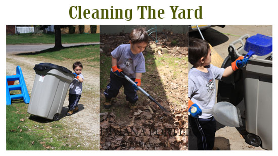 kolasecleaningtheyard copy