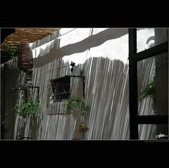 Ragusa, fascino ombroso / Dubrovnik, charme and shadow (guido ranieri da re: work wins, always off) Tags: architecture nikon ombre dubrovnik architettura indianajones ragusa nonsonoglianniamoresonoichilometri guidoranieridare