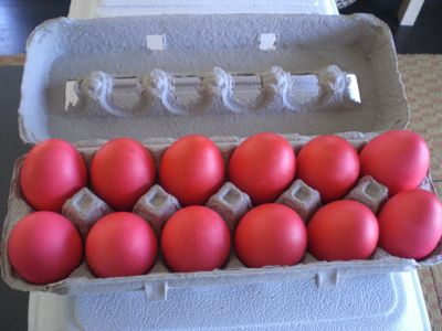 set eggs back into their box