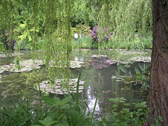 Monets canvas. (davidezartz) Tags: monet claudemonet 1919 painting master impressionist 18401926 lebasinauxnympheas waterlilypond sold 80m