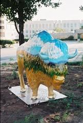 buffalo (ChazWags) Tags: road trip blue sky brown white green art oklahoma clouds gold buffalo downtown miles plains oklahomacity 6500 thegreatroadtripjune08
