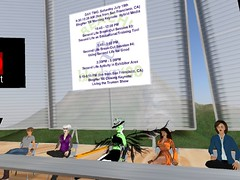 BlogHer08 - Education & Training in Virtual Worlds Panel