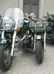 C'hai le corna!... (alfiererosso) Tags: funny horns motorbike moto tyres ruedas motocicleta corna ruote mezziditrasporto oddpics hornos radhe meansoftransport motorahd