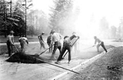 Asphalt crew at University of Washington, 1926 (Seattle Municipal Archives) Tags: seattle 1920s workers working asphalt universityofwashington laborers streetconstruction seattlemunicipalarchives