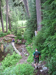 Creek crossing in Commonwealth Basin.