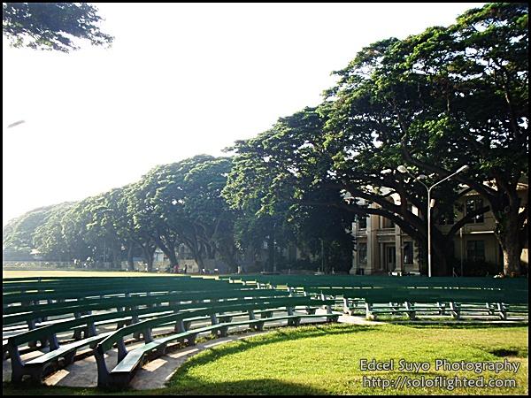 amphitheater5