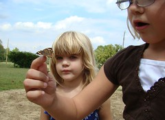 Isabelle holds a common buckeye