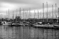 waterforest (vedder81) Tags: barcelona trees espaa water clouds forest boats grey harbor mar dock spain mare cloudy espana spanish porto barceloneta acqua bara litoral barcellona spagna moli