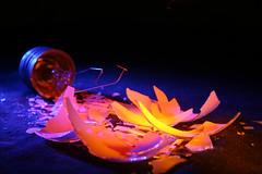 Bright Idea (Daniel M. Robinson) Tags: lightbulb dmr bensonisdead danielmrobinson