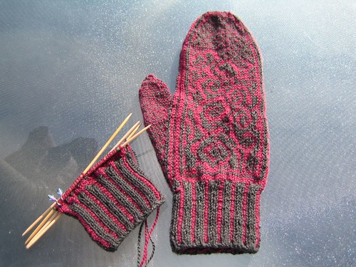 Enemoi Mitts Front