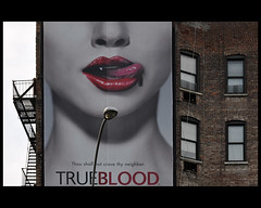 True Blood (Dreamer7112) Tags: nyc newyorkcity windows ny newyork window wall stairs facade ads advertising typography tv nikon streetlamp manhattan ad front billboard advertisement explore lamppost billboards walls neighbors neighbours advertisements hbo iny publicidade pubblicit d300 novaiorque  alanball trueblood dreamer7112  nikond300  clipcook
