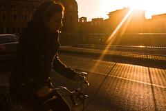 sun and bike-5549