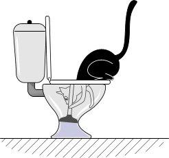 los gatos, cuando meten la cabeza en el water, en realidad lo estan desatascando