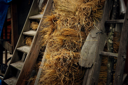 Straw for the winter