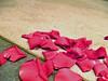 1021_ステージに撒かれたバラ