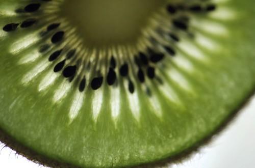 kiwi3.jpg