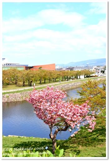 Hokkaido_2131