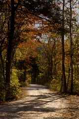 Lost Valley Road (clay.wells) Tags: road park color fall nature october state clayton wells arkansas canon50mmf18 lostvalley canoneos40d img7369ed1