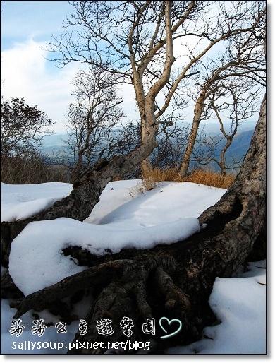 095 被雪覆蓋了