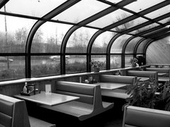 Rainy day (**Ms Judi**) Tags: wood windows blackandwhite bw plants plant leaves lines car rain menu pepper grey restaurant cafe waiting moody gloomy traffic dynamic cloudy vibrant empty curves salt rainy seats frame tables booths mustard gloom greyday terrific rainday liveplant msjudi thecorral peshtigowisconsin judistevenson catsip