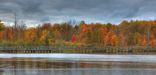 North Chagrin Marsh Boardwalk