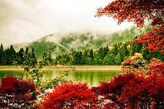 Inagako Mist (TheJbot) Tags: autumn trees lake fall japan fog clouds foliage  hdr jbot lightroom thejbot