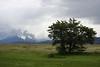 CAMP VIEW (FOTOS BENO) Tags: chile park parque naturaleza mountain southamerica nature nationalpark natural natureza torresdelpaine montaña montanha magallanes parquenacional parquenacionaltorresdelpaine sudamérica regióndemagallanes magallanesregion nationalparktorresdelpaine