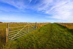 The Other Side (Gary*) Tags: blue sky green field grass clouds canon fence countryside bravo gate sheep path horizon hill perspective farmland brow sharpenhoe lovephotography 40d mywinners anawesomeshot markhamway