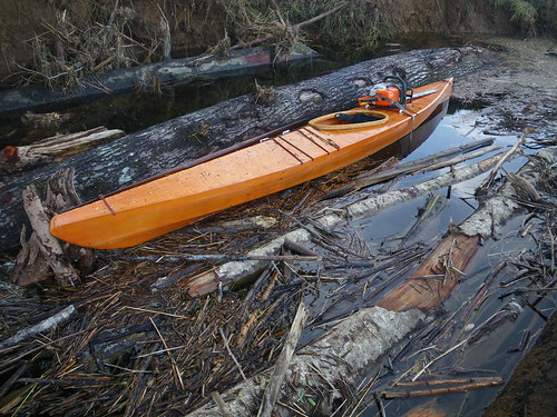 kayak and log jam