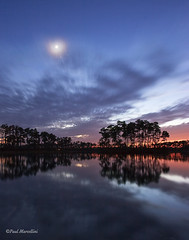 Aligned (Paul Marcellini) Tags: county longexposure moon night island venus florida everglades planets evergladesnationalpark jupiter southflorida miamidade pineland planetsalign paulmarcellini