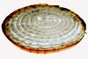 Onion Perspective (Ciro Boro - photo) Tags: light texture textura backlight contraluz back onion backlit contra cebola acrilico plexy