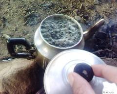 Thé شاي في ربوع بني يزناسن