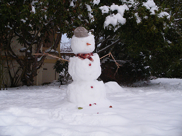 Sunset Hill Snowman