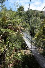 Abel Tasman National Park (acidburnblue) Tags: newzealand abeltasmannationalpark