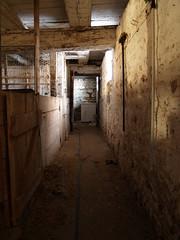 Down The Hall (Cry) Tags: urban ontario abandoned ex barn farm pony farn plattsville uer