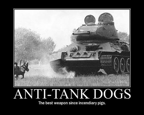 Anti-Tank-Dogs