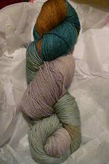 Yarn Pirate Rain Shadow Back