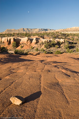 Devil's Garden Slickrock (Marc Shandro) Tags: blue sky utah desert clear slickrock escalante