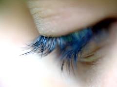"""<a href=""""http://www.flickr.com/photos/8431295@N08/3586153472/"""" mce_href=""""http://www.flickr.com/photos/8431295@N08/3586153472/"""" target=""""_blank"""">AlfredoZablah</a> via Flickr"""