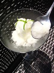 Lemon Water Ice (SeppySills) Tags: food lemon philly waterice